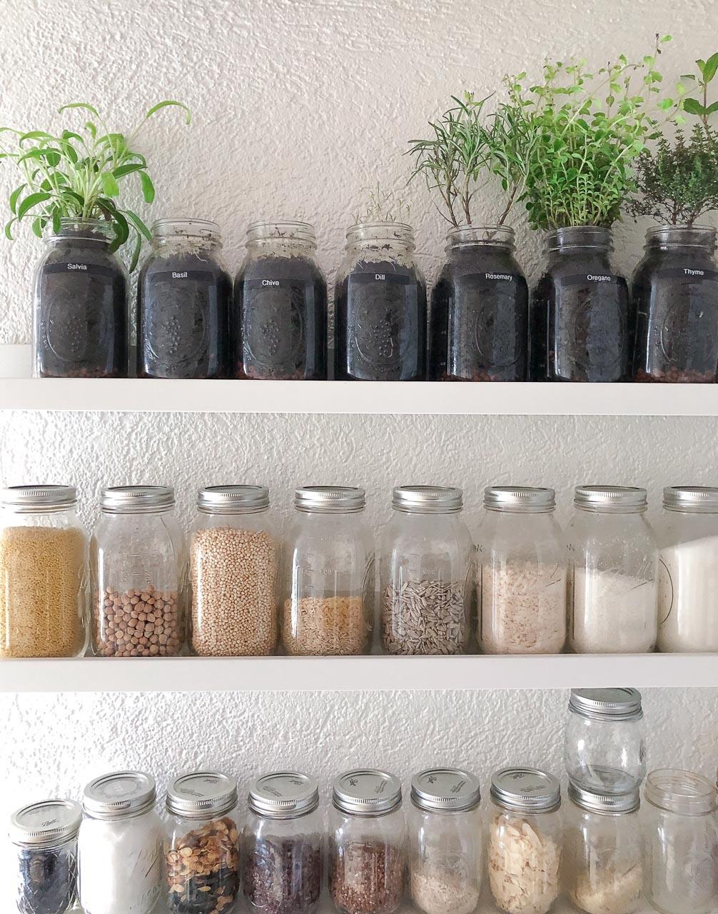 Grow Your Own Herbal Garden Indoors